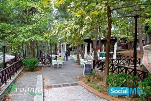 internet marketing socialme (3)